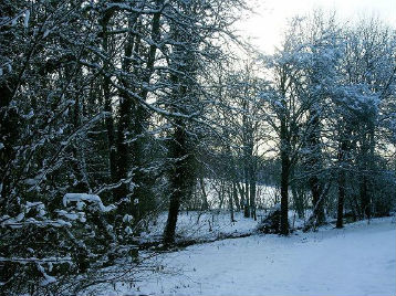 Paysage en hiver à l`Orchidée Home - Haute-Marne